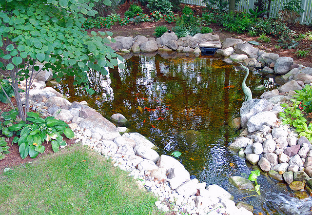 Water Features Pond Boy Custom Pond
